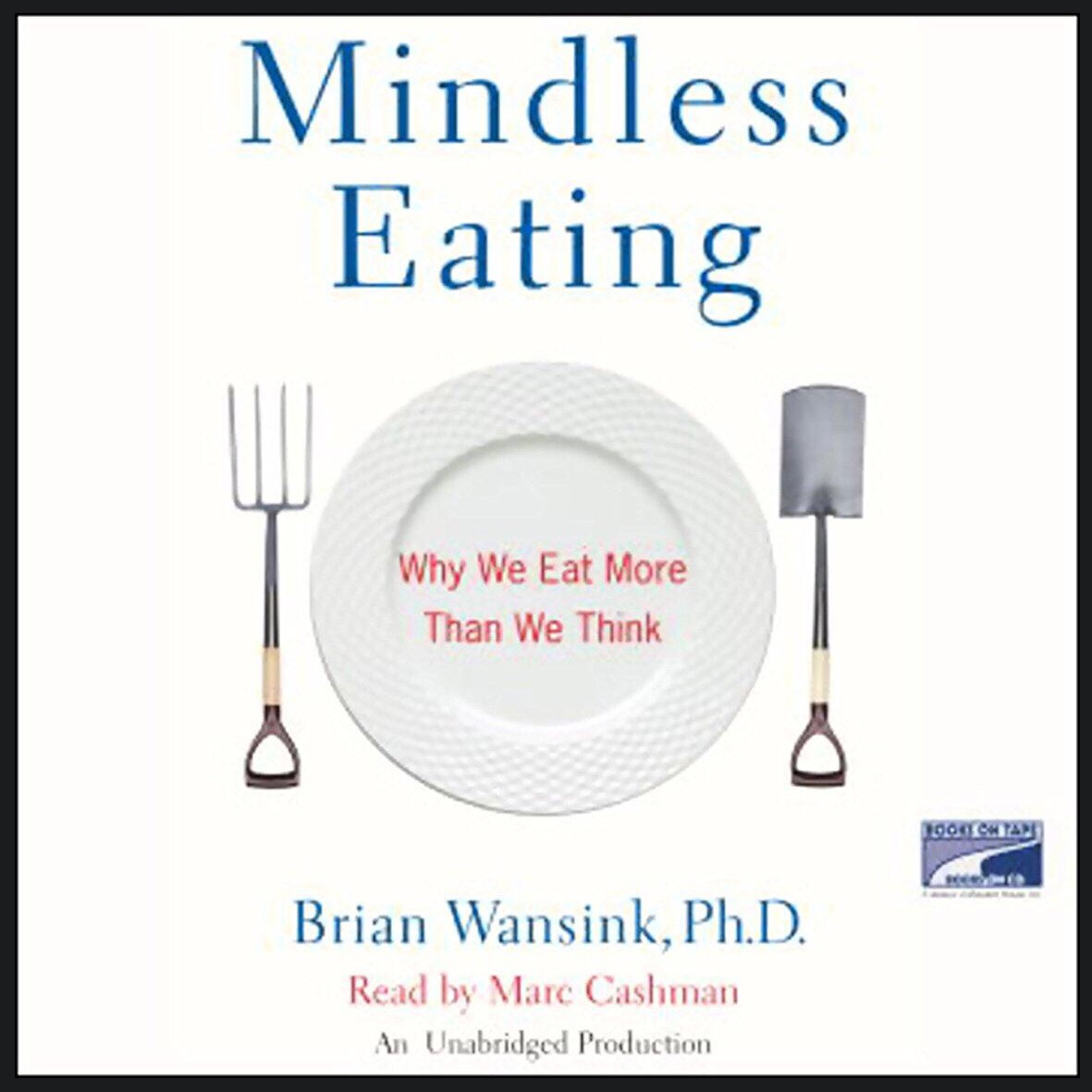Mindless Eating Book